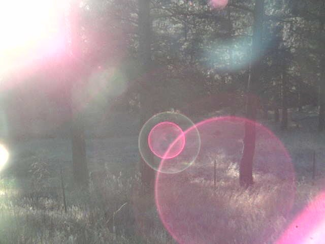 An example of lens flare
