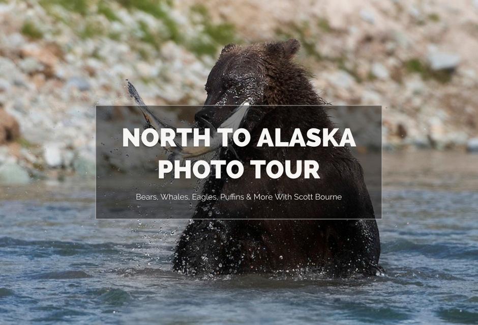 North To Alaska Photo Tour