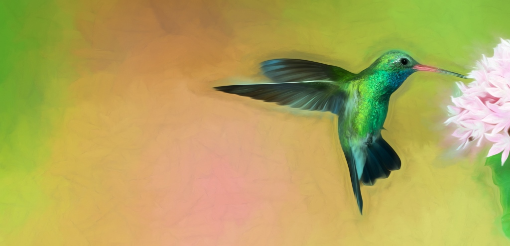 Hummingbird Art Picture by Scott Bourne