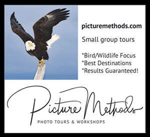 PictureMethods Photo Workshops