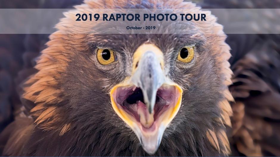 PictureMethods Raptor Photo Tour