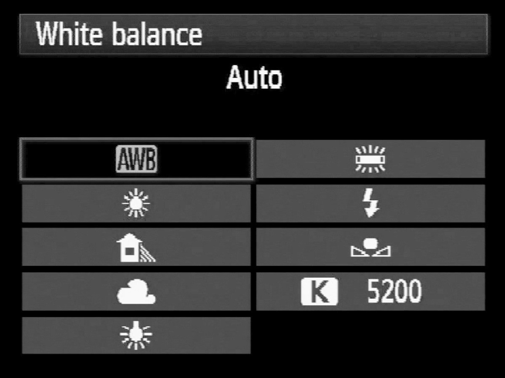 White Balance Illustration