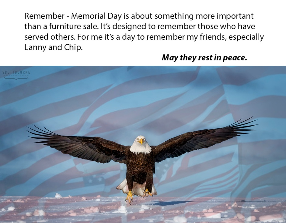 Memorial Day Photo Of An Eagle By Scott Bourne