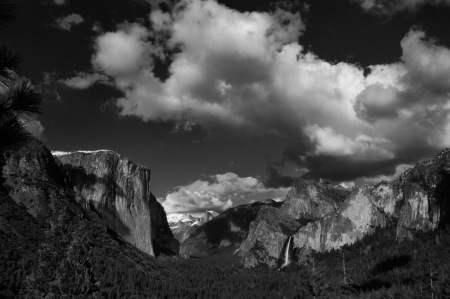 Yosemite Photo by Scott Bourne