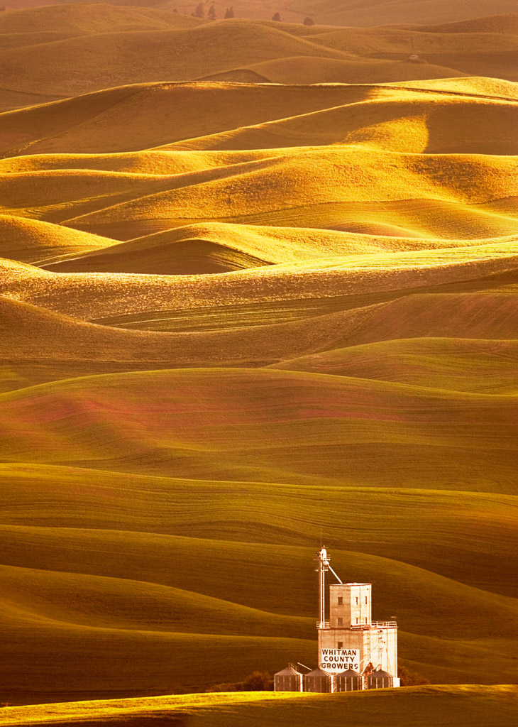 Palouse Photo by Scott Bourne