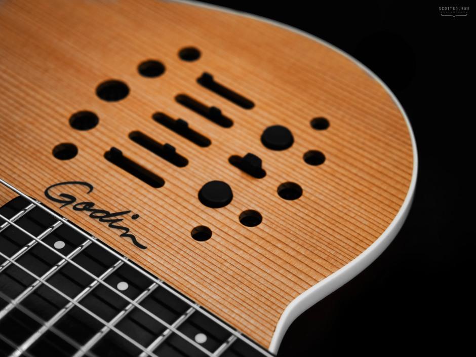 Guitar Photo by. Scott Bourne